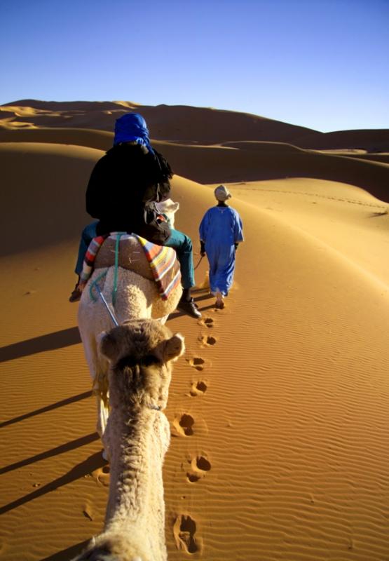 Morocco caravan